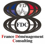 Logo France Dem Consulting